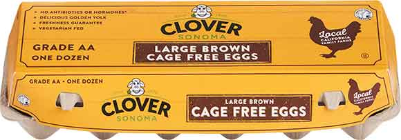 Clover Cage Free Large Brown Eggs