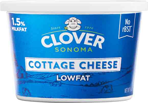Clover Sonoma Cottage Cheese