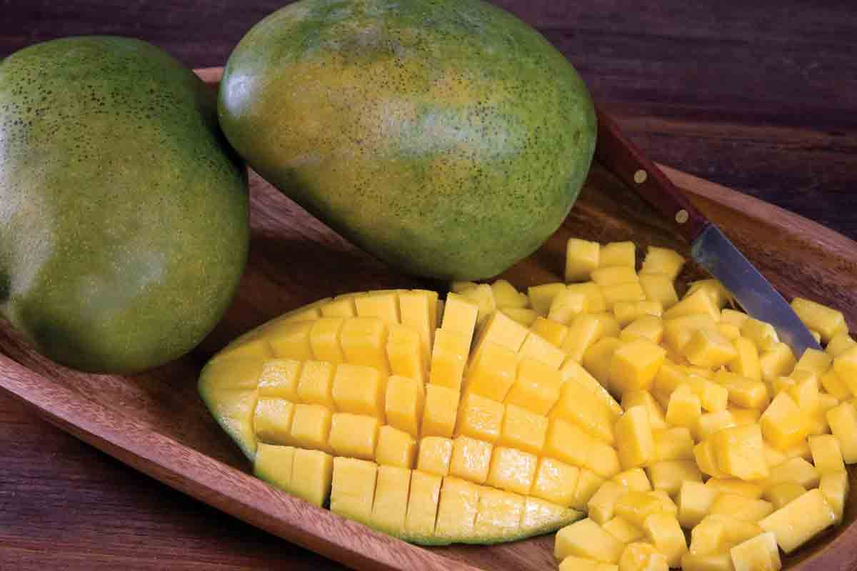 Organic Extra Large Keitt Mangos