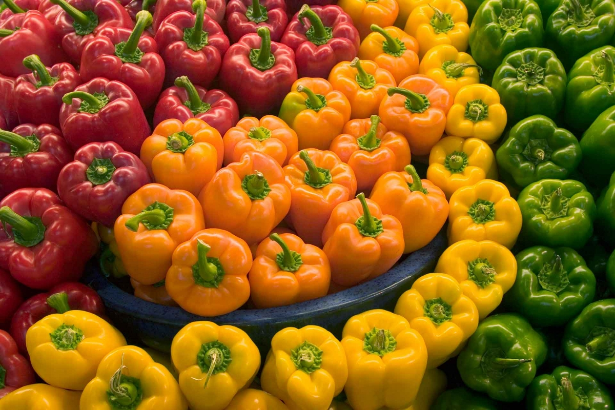 Organic Red, Green, Orange or Gold Bell Peppers