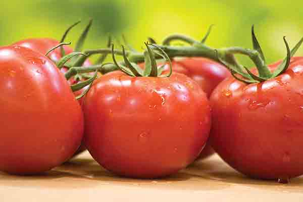 Organic Vine Cluster Tomatoes