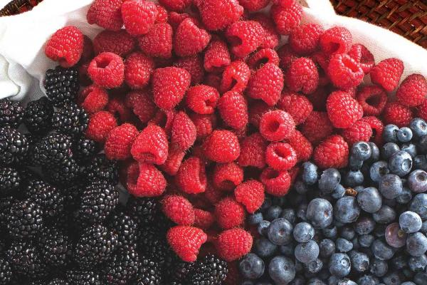 Organic Blackberries, Blueberries or Raspberries