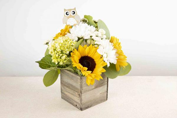 Hoot's There? Bouquet