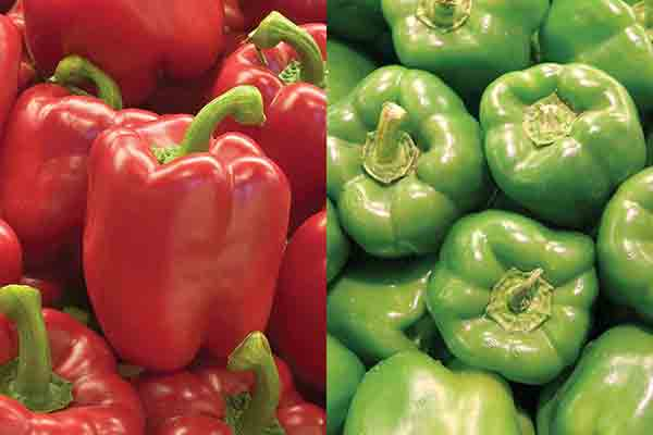 Red or Green Bell Peppers