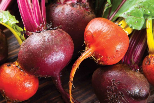 Organic Red or Gold Beets
