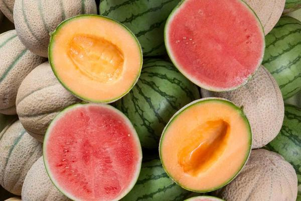 Tuscan Cantaloupes or Pureheart Seedless Watermelons