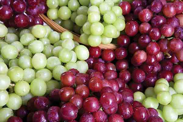 Green or Red Grapes