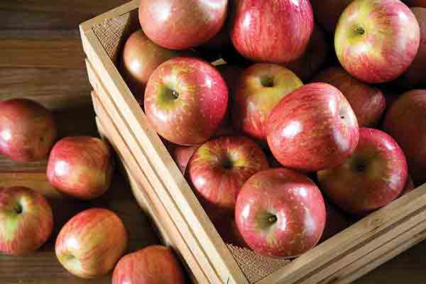 Organic Kiku Apples