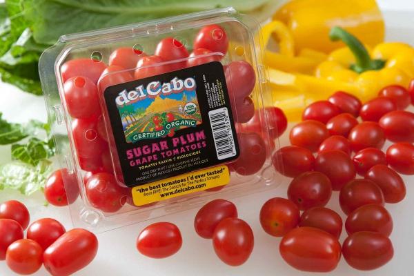 del Cabo Organic Sugar Plum Grape Tomatoes