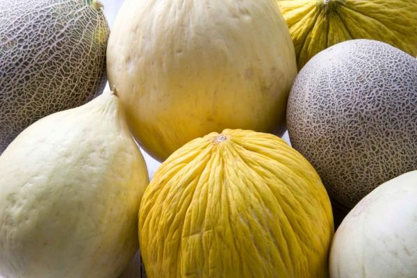 Mixed Variety Melons